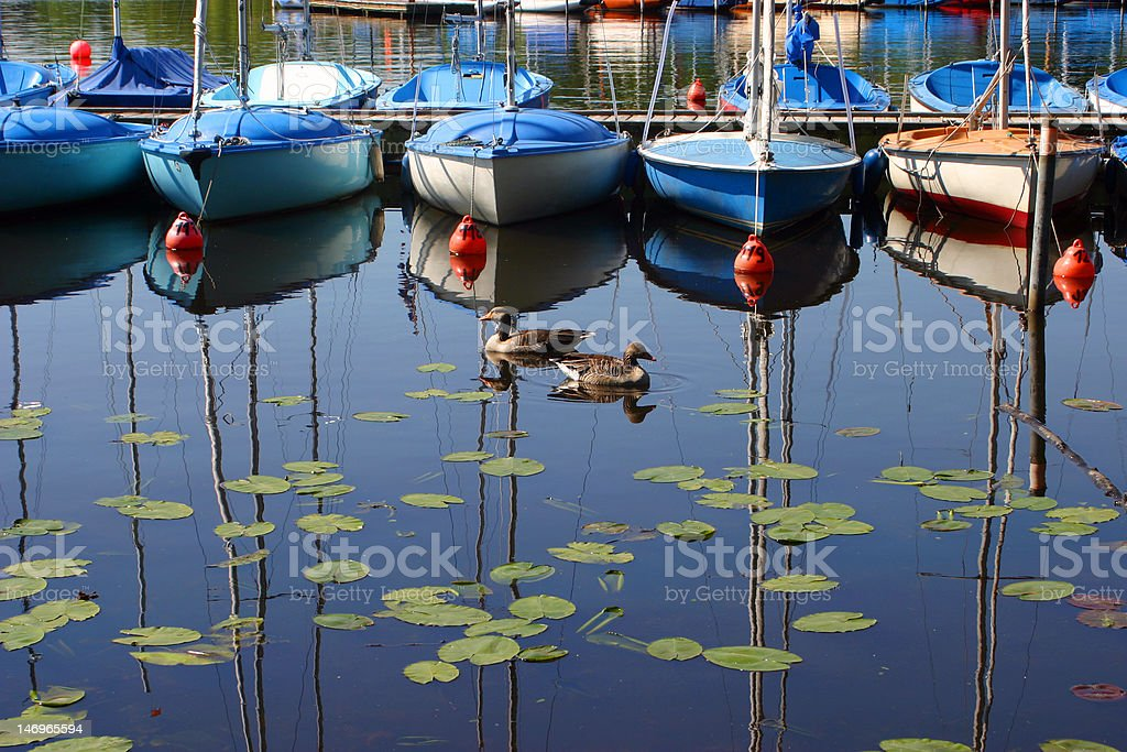 Sailboats in a row royalty-free stock photo