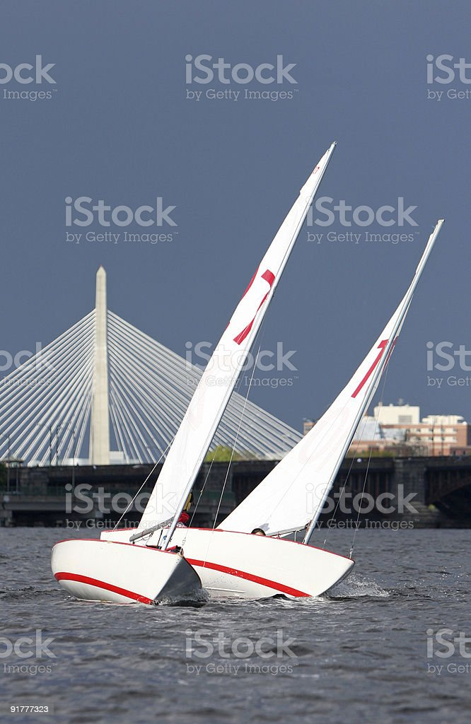Sailboats on the Charles River with Zakim Bridge in background stock photo