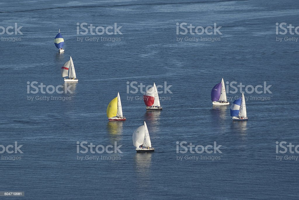 Sailboats on the water stock photo