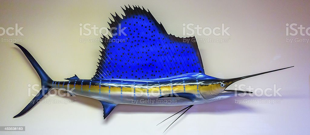Sailfish in the Wall stock photo