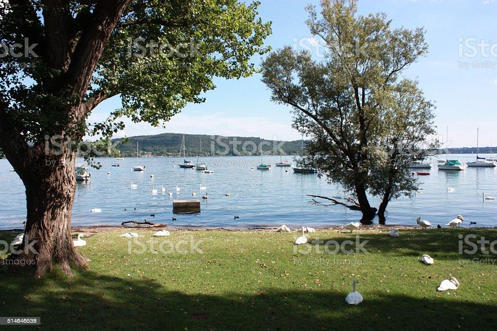 Sailing boats in Lake Maggiore under blue sky, Piemonte Italy stock photo