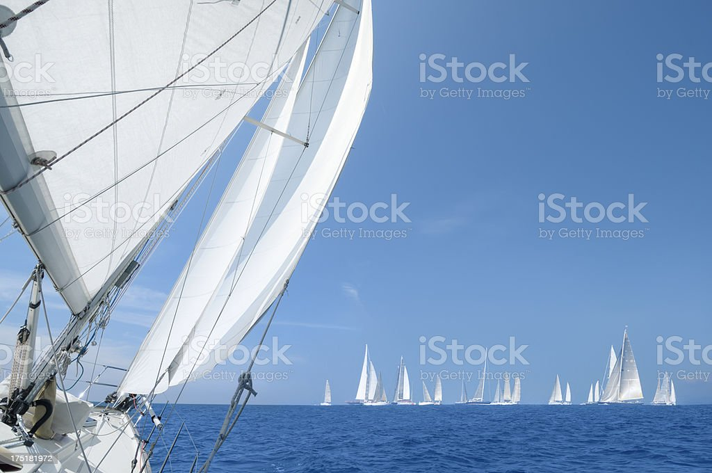 Sailing competition royalty-free stock photo
