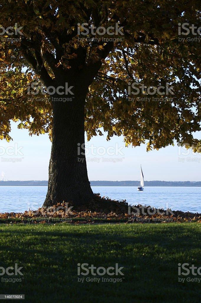 Sailing in fall stock photo