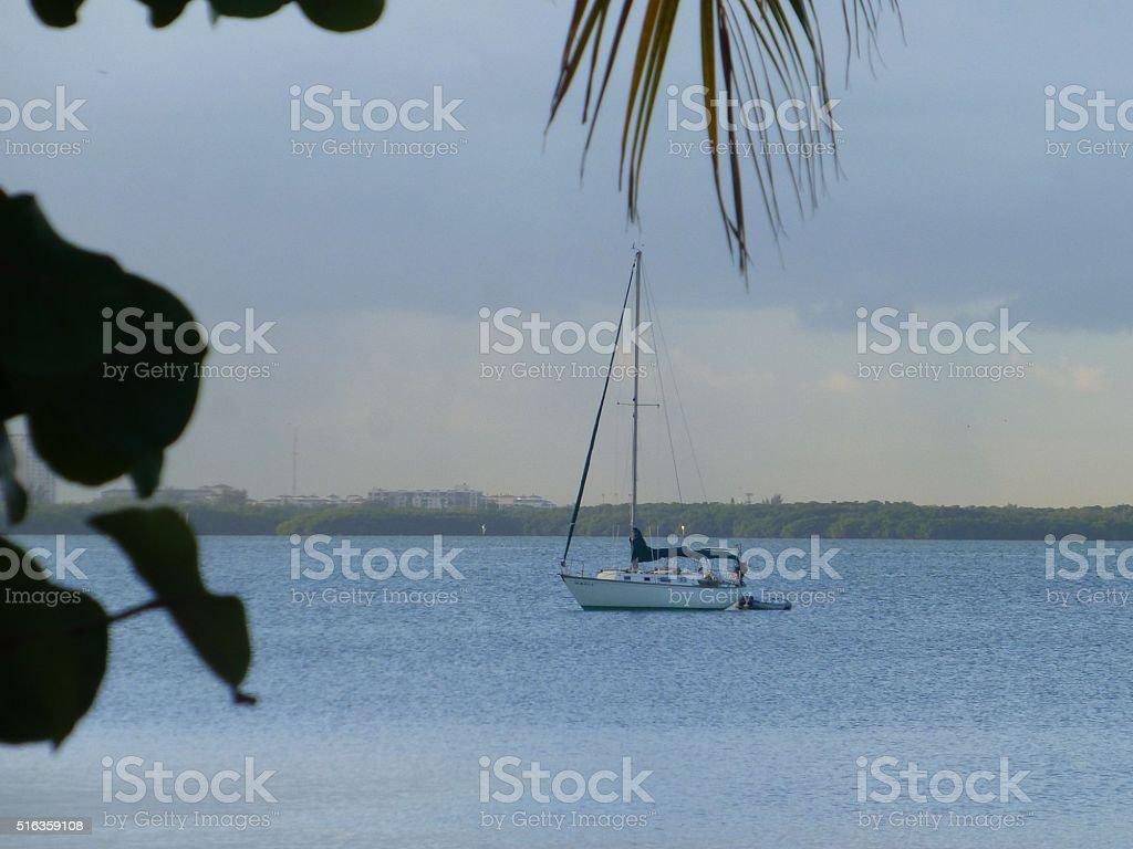 Sailing in the trpics stock photo
