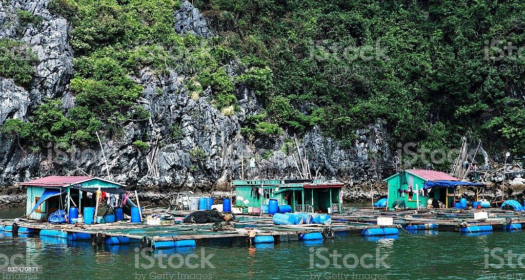 sailing on halong bay stock photo