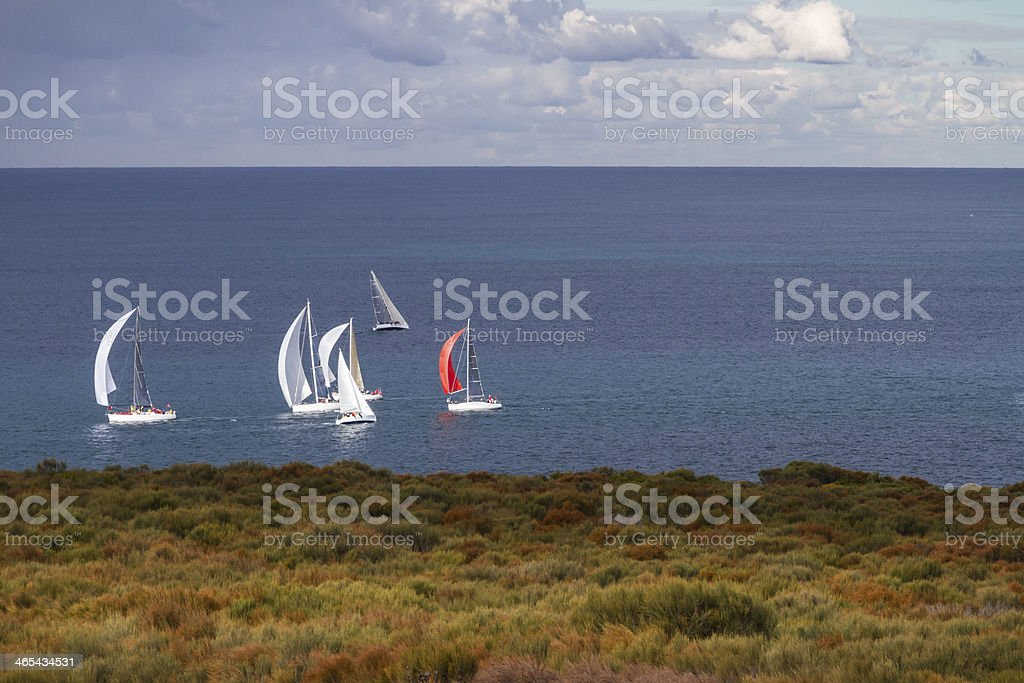 Sailing on Sydney Harbour stock photo