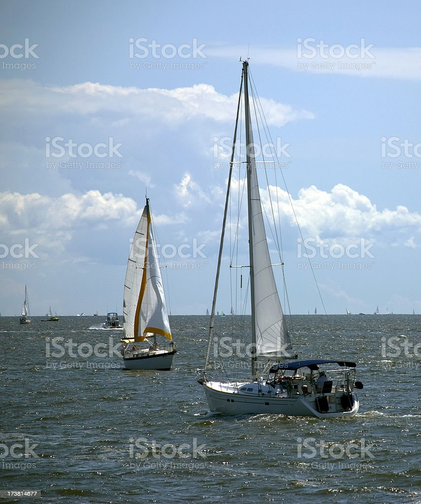 Sailing on the Chesapeake Bay royalty-free stock photo