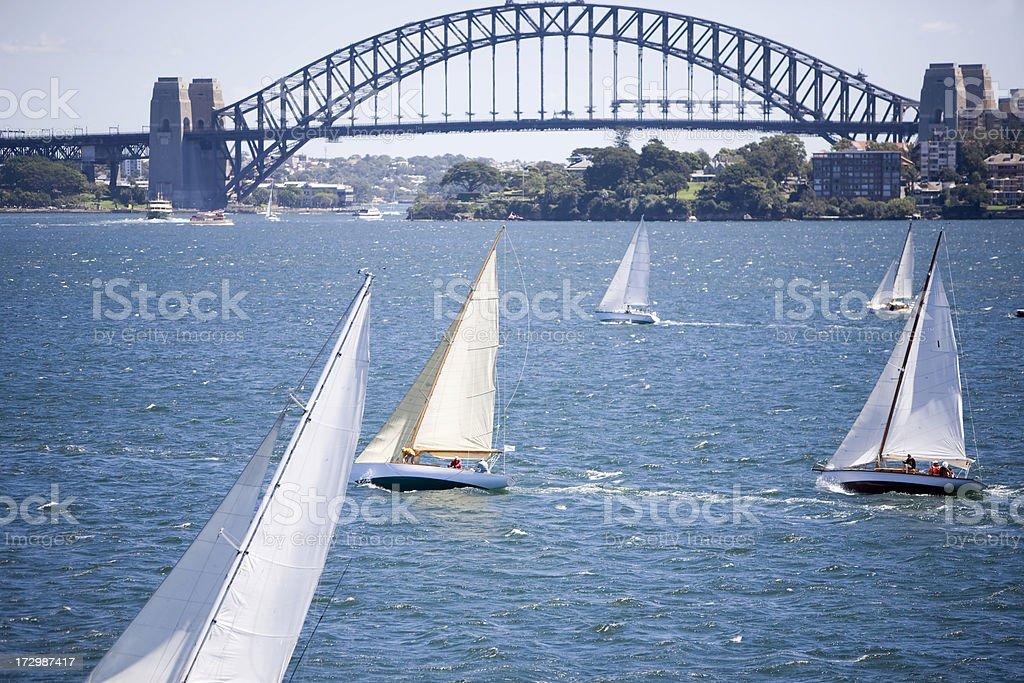 sailing race stock photo