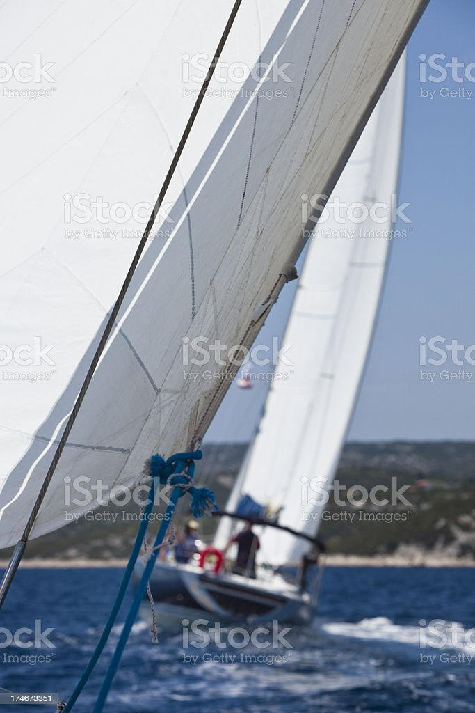 Sailing regatta royalty-free stock photo