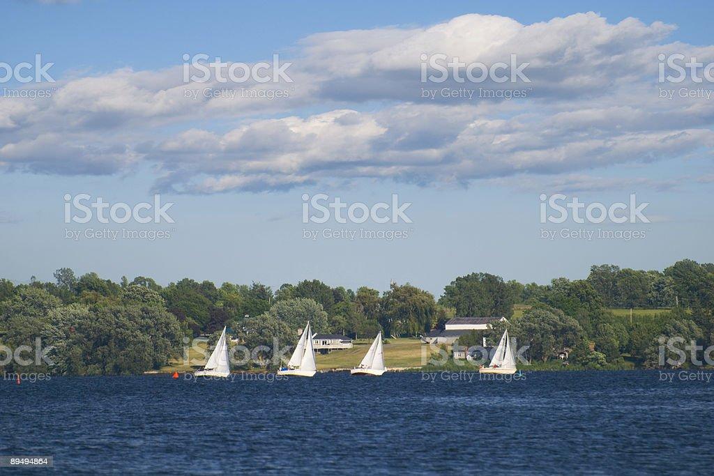 Sailing Regatta royalty-free stock photo