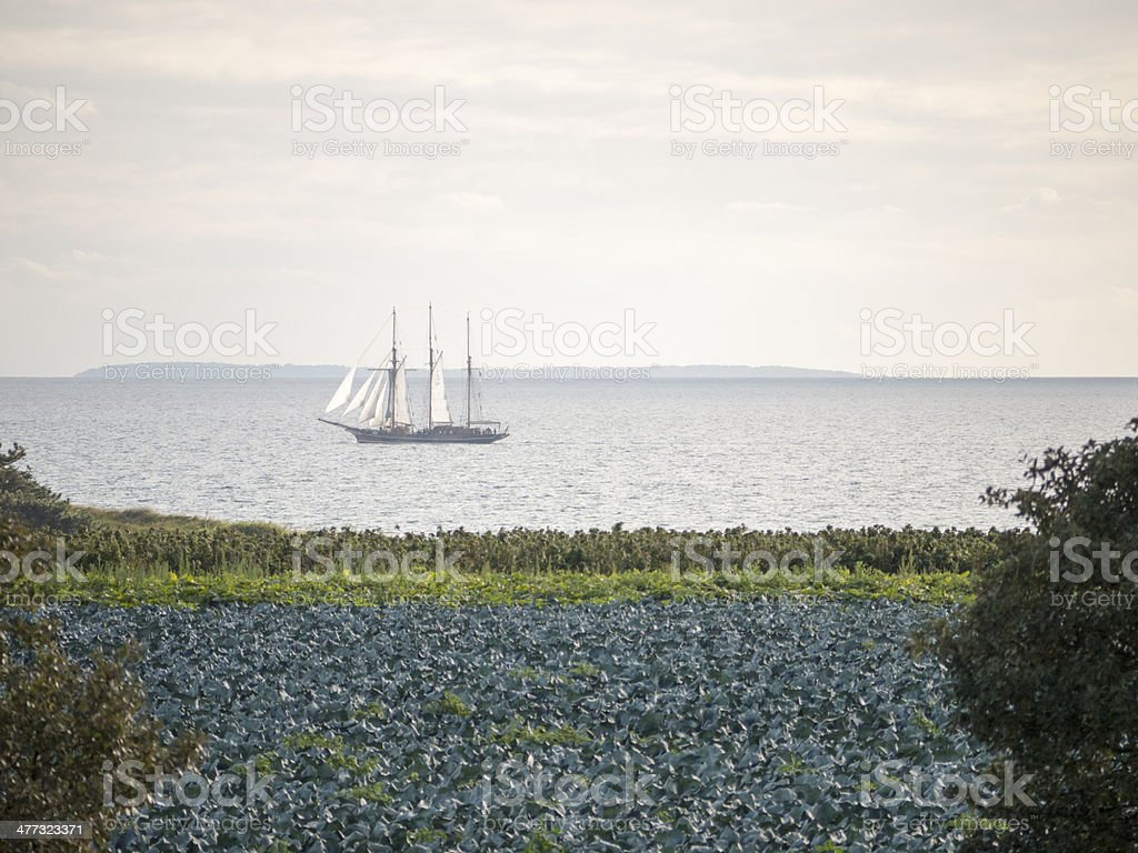 Sailing Ship in Denmark royalty-free stock photo