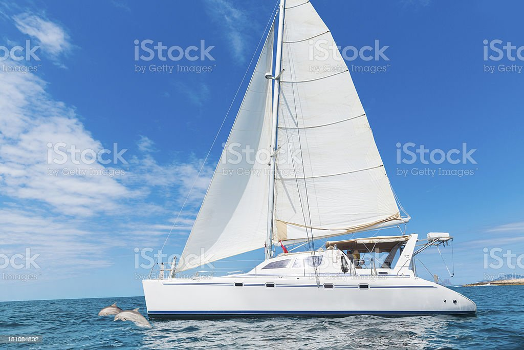 Sailing with dolphins royalty-free stock photo