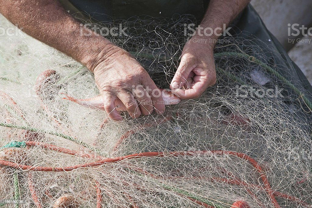 Sailor taking a fish of their fishing nets stock photo