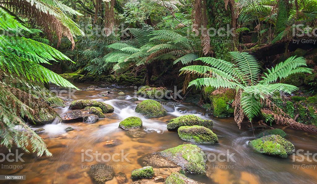 Saint Columba Falls Creek stock photo