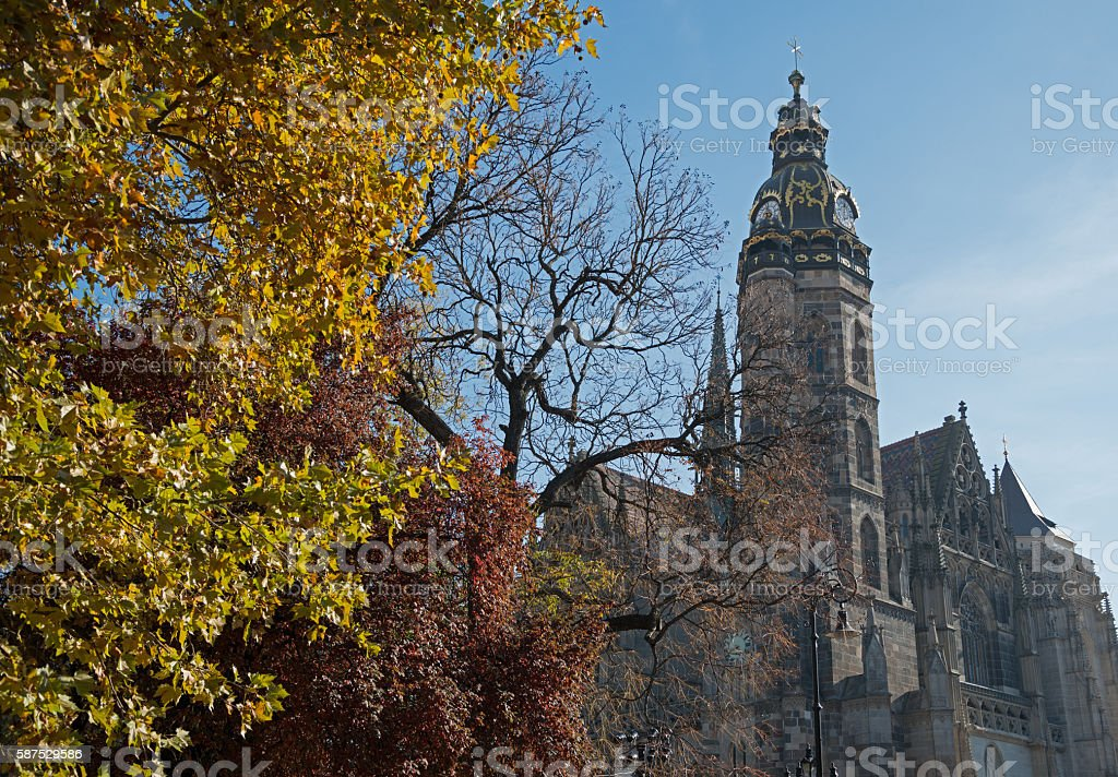 Saint Elisabeth Cathedral with autumn trees in foreground stock photo