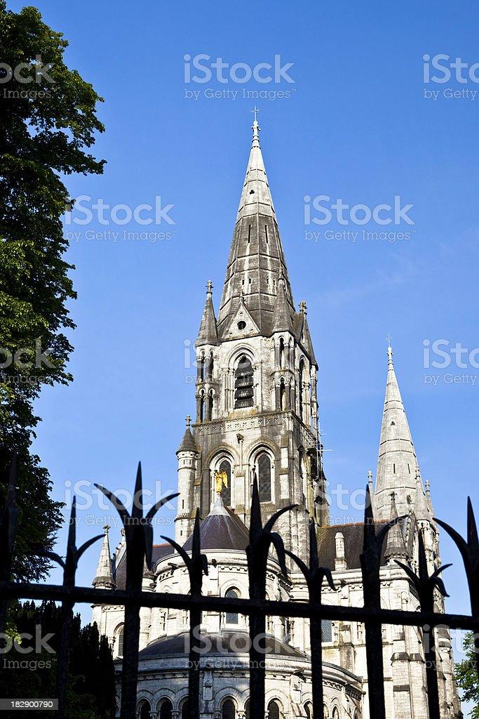 Saint Fin Barre's Cathedral Cork Ireland stock photo