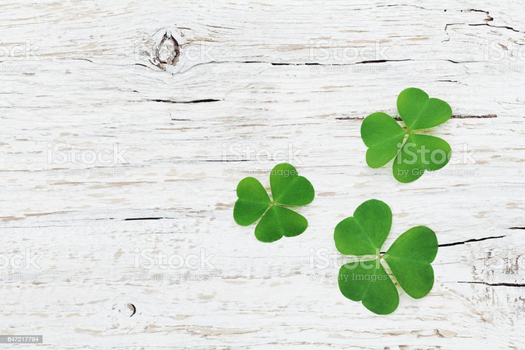 Saint Patricks Day background with green shamrock or clover. stock photo