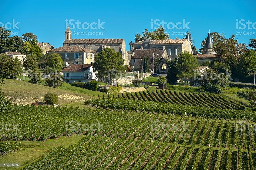 Saint-Emilion-Vineyard landscape-Vineyard south west of France stock photo