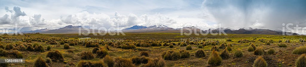 Sajama National Park, Bolivia XXXL Zoom in for details stock photo