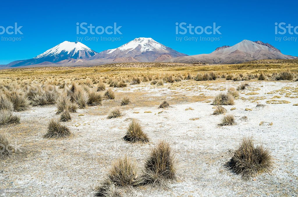Sajama stock photo