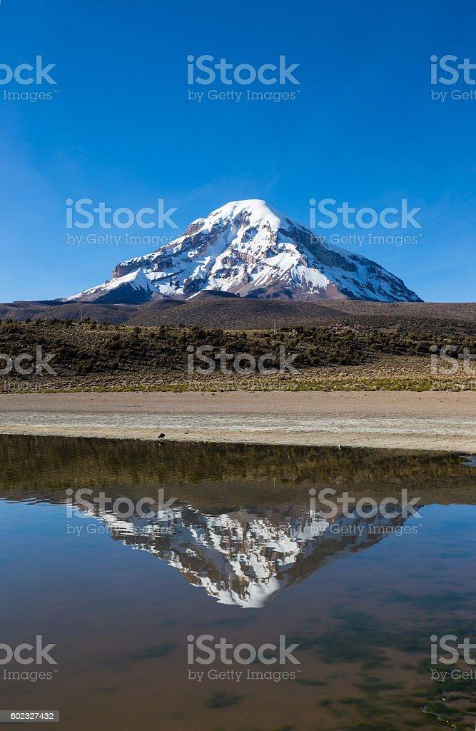 Sajama volcano and lake Huayñacota. Andean Bolivia stock photo