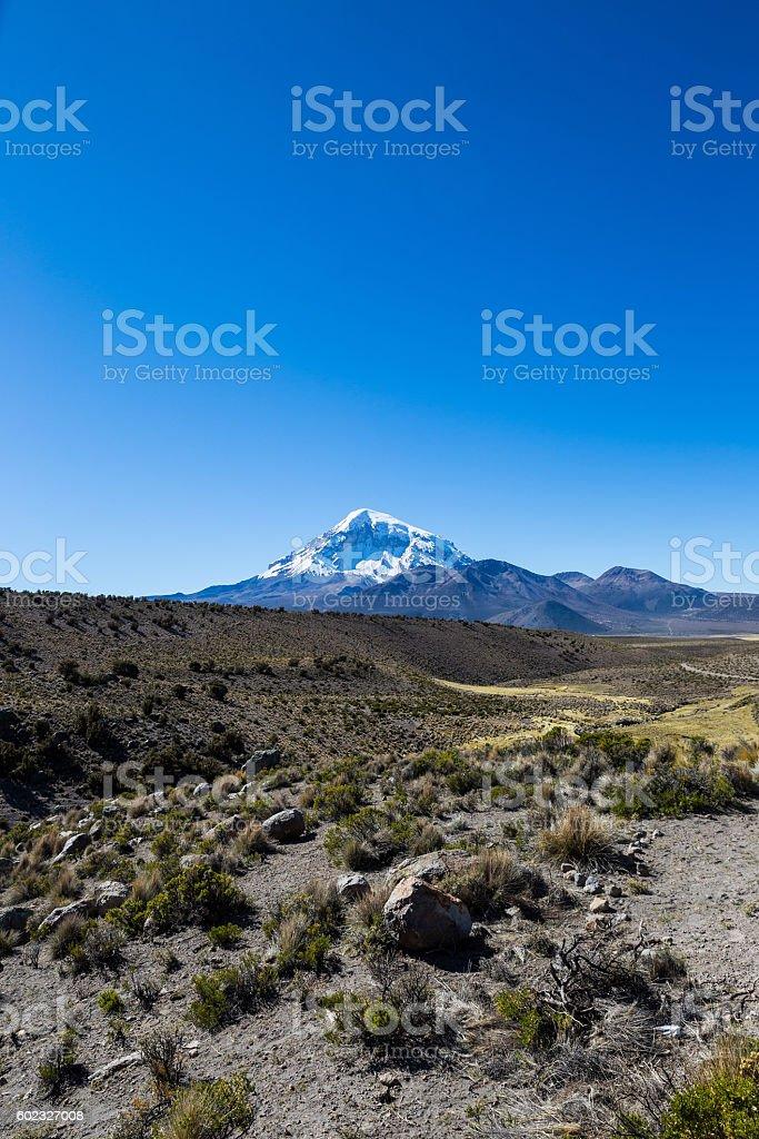 Sajama volcano in the Natural Park of same name stock photo