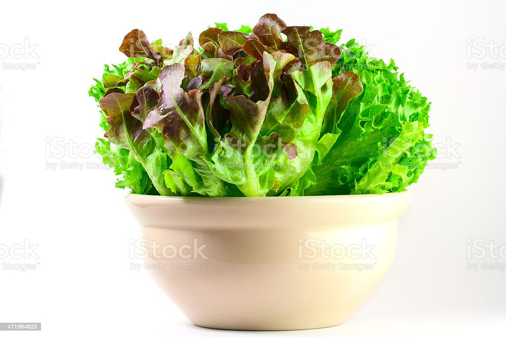 Salad For Your Health royalty-free stock photo