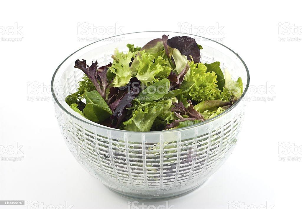 Salad greens royalty-free stock photo