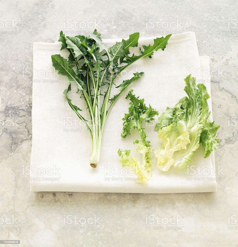Salad Greens stock photo