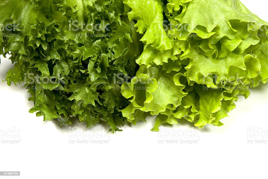 Salad Leafs royalty-free stock photo