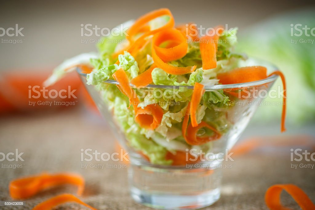 salad of fresh chopped cabbage and carrots stock photo