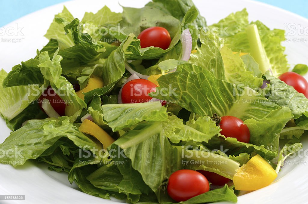 Salad. royalty-free stock photo