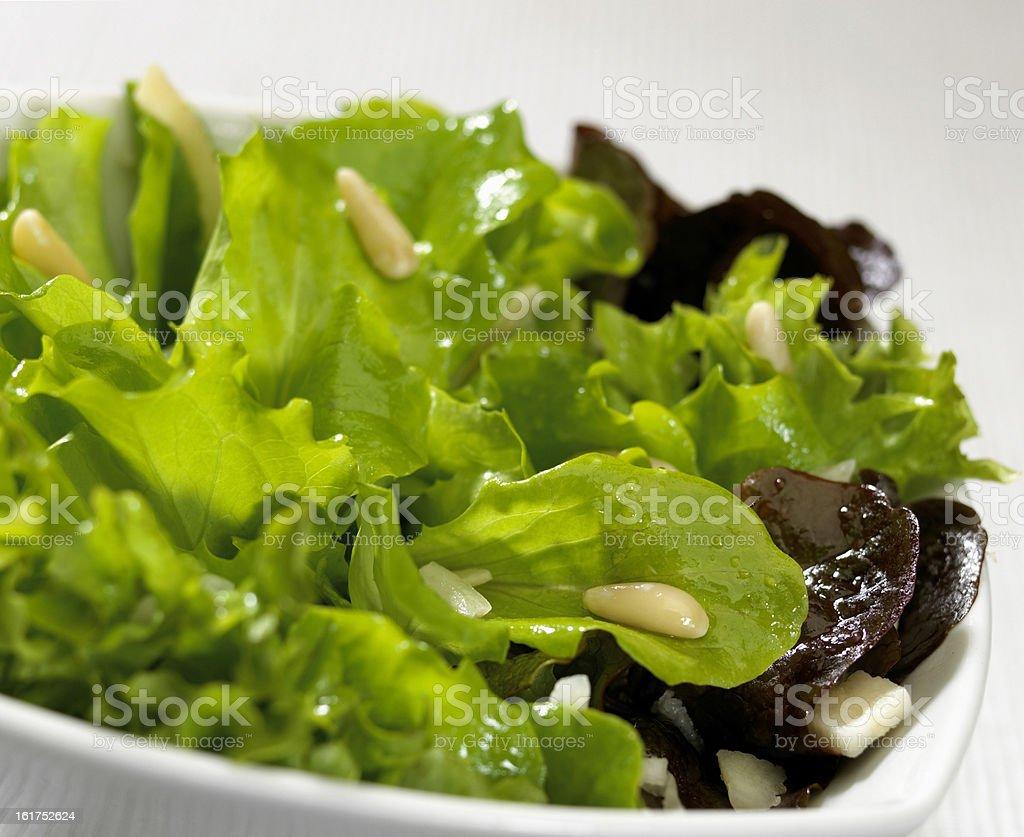 salad plate royalty-free stock photo