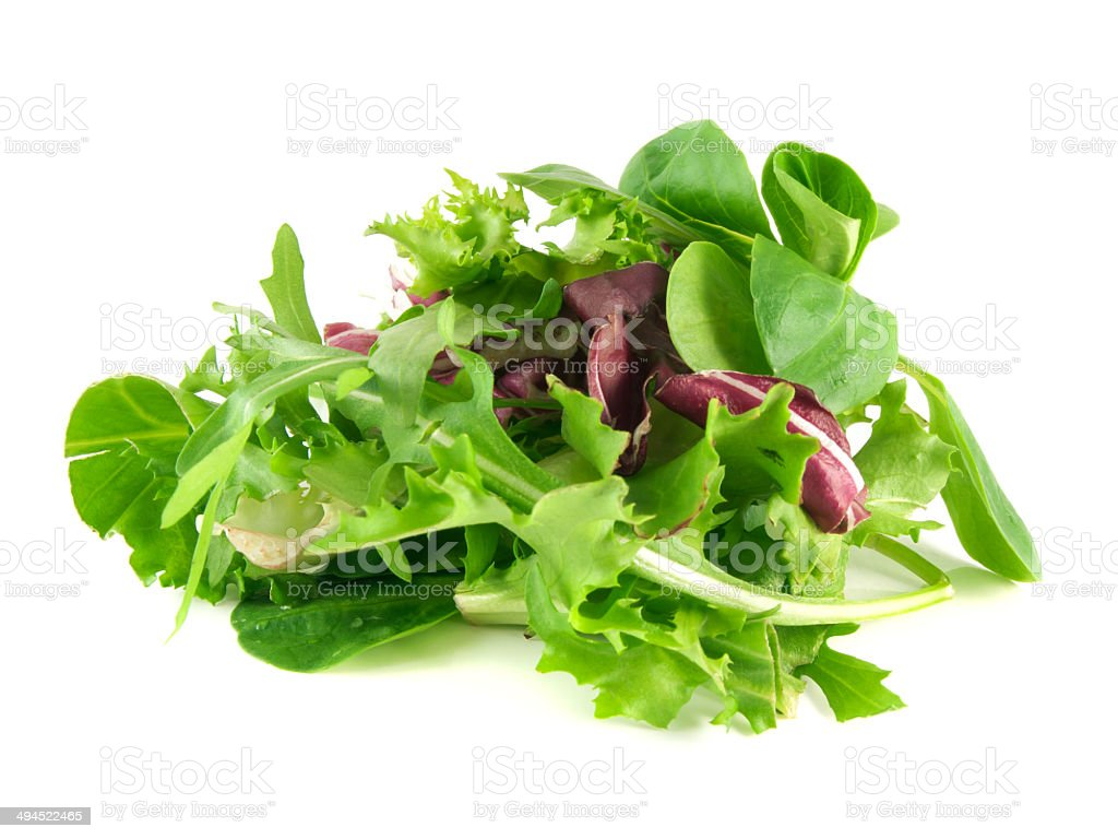 Salad rucola, frisee, radicchio and lamb's lettuce stock photo