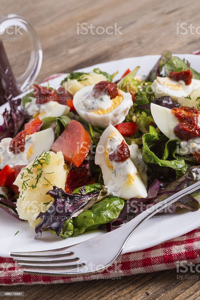 Salad with boiled egg royalty-free stock photo