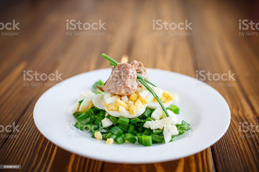 salad with cod liver oil, eggs and green onion stock photo