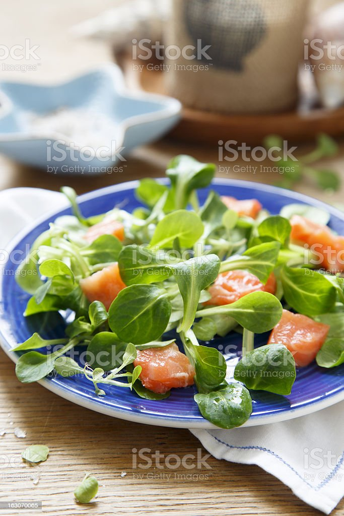 Salad with salmon royalty-free stock photo
