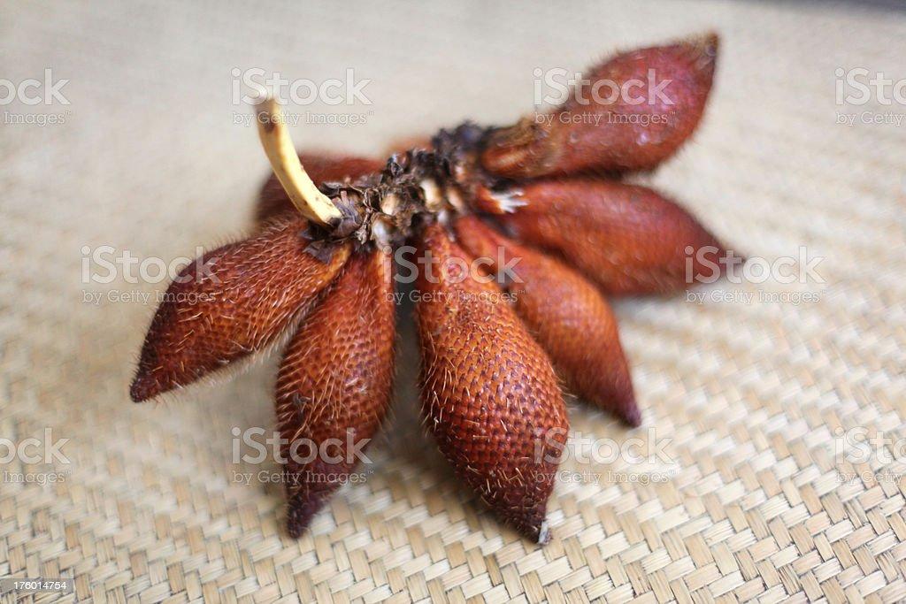 salak exotic tropical fruit stock photo