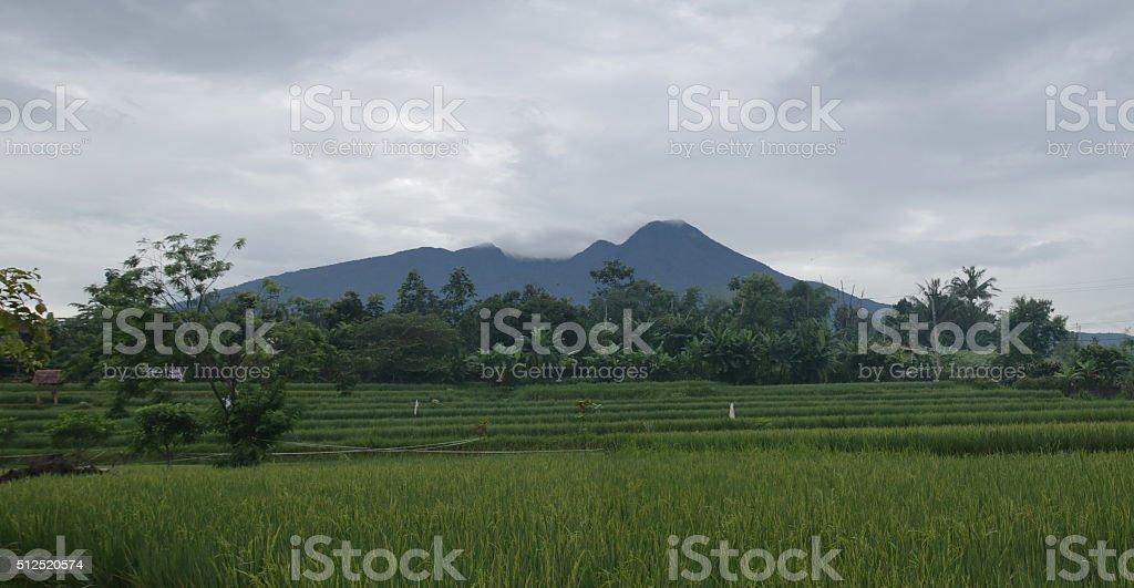 Salak Mountain stock photo