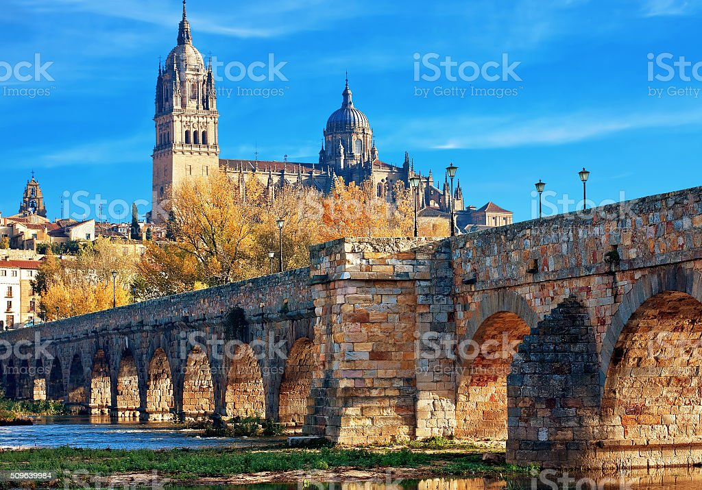 Salamanca Cathedral. Castile and Leon, Spain stock photo