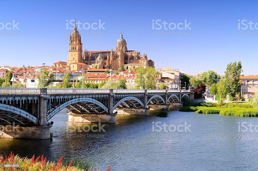 Salamanca cathedral. stock photo