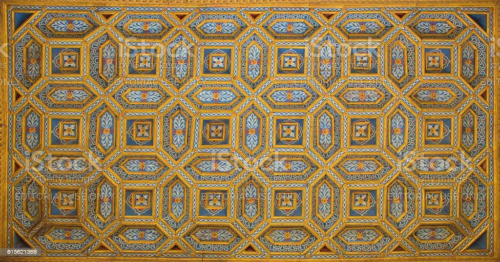 Salamanca - ceiling of staris in Casa de las Conchas stock photo