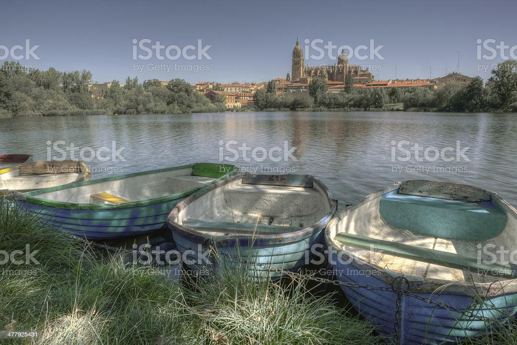 Salamanca from the river stock photo