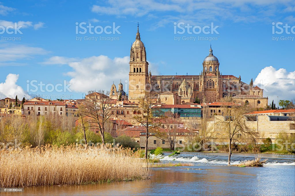 Salamanca - The Cathedral and the Rio Tormes river. stock photo