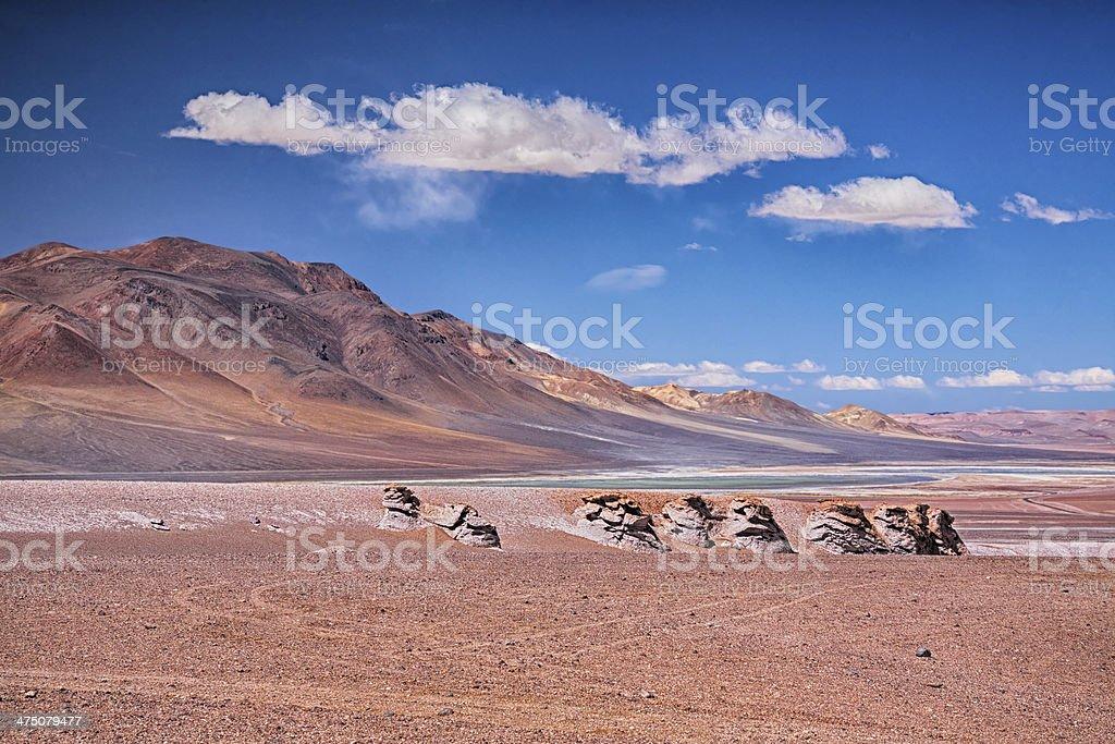 Salar Aguas Calientes, desert Atacama royalty-free stock photo