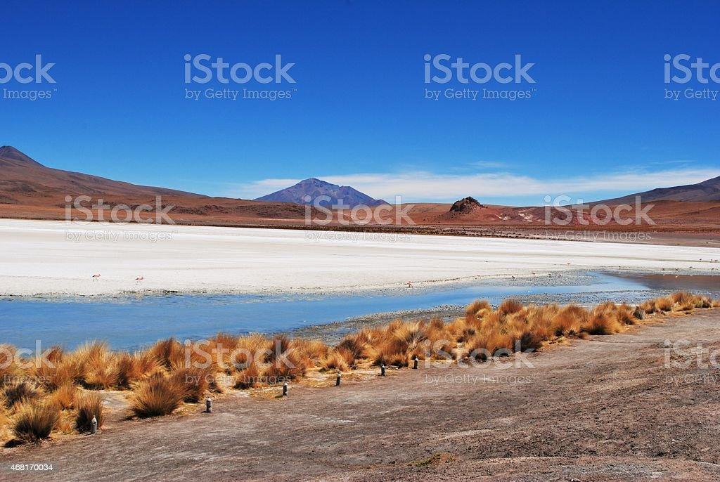 Salar De Unyuni, Desert Landscape, Bolivia stock photo