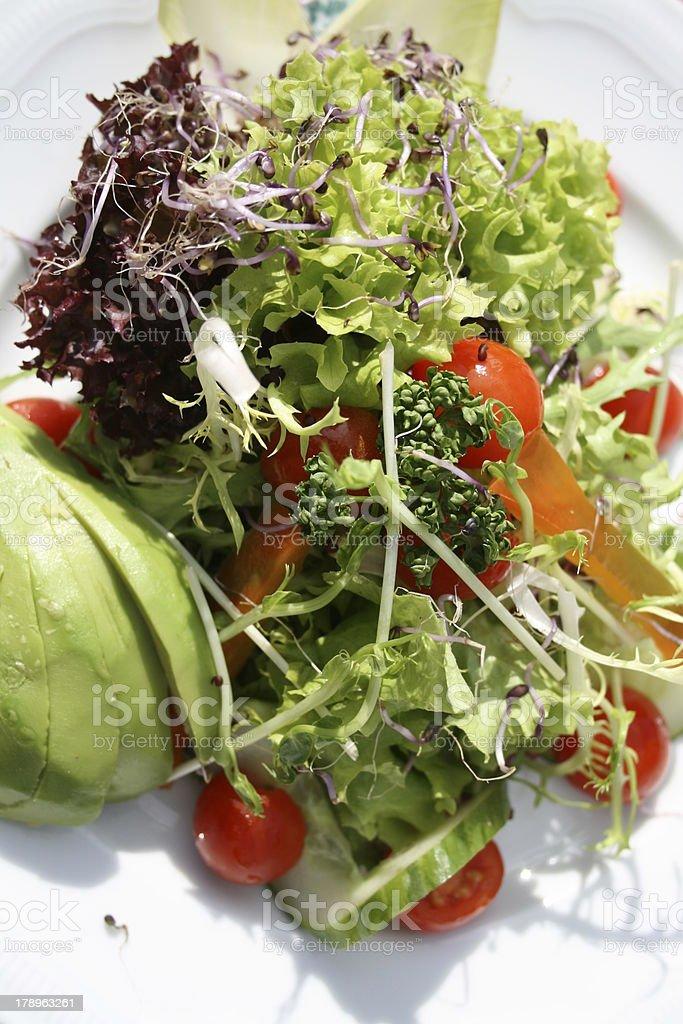 Salat mit Avocado stock photo