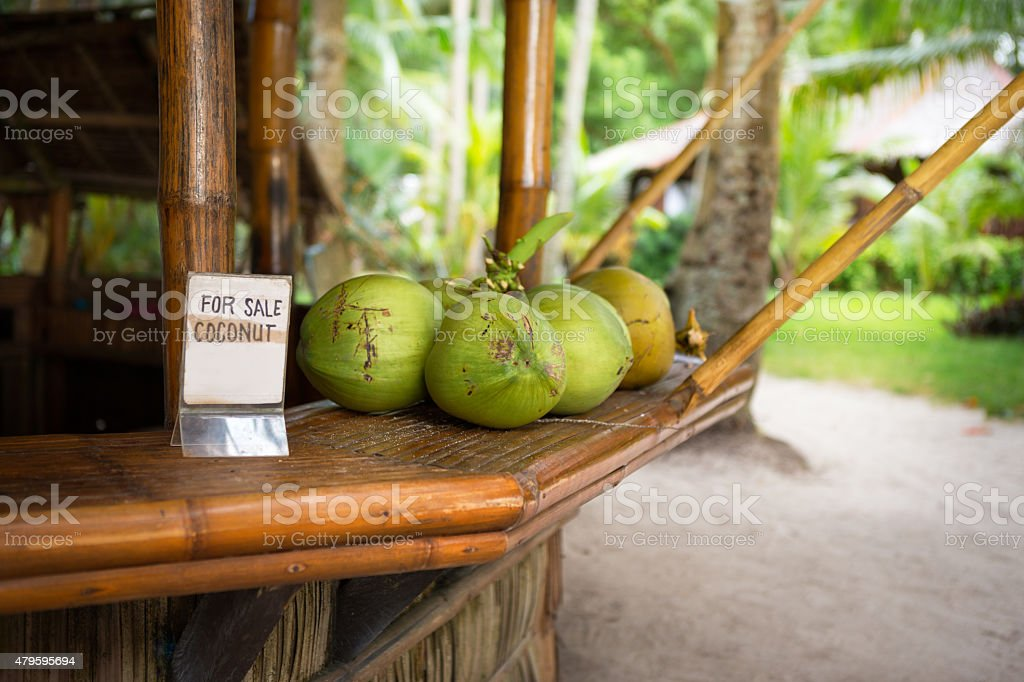 sale of fresh green coconuts stock photo