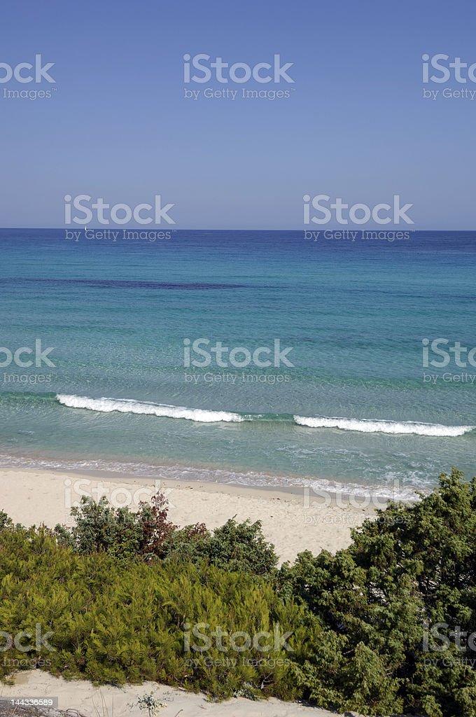 Saleccia beach royalty-free stock photo