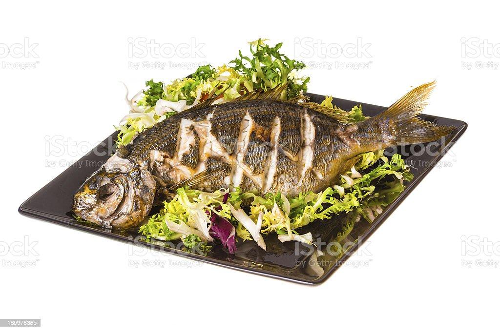 Salema porgy - sarpa fish stock photo